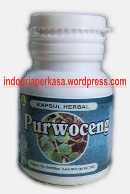 purwoceng the viagra of java kumpulan artikel tips